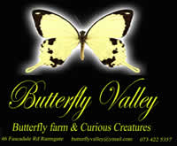 Butterfly Valley KZN